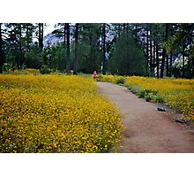 Field Of Dreams ! Photographic Print