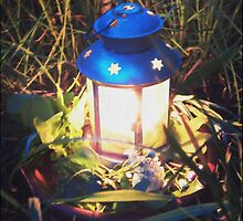 Midsummer Lantern by SuzyPhoto