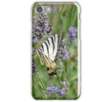 Scarce Swallowtail  iPhone Case/Skin