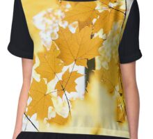 Fall Leaves Chiffon Top