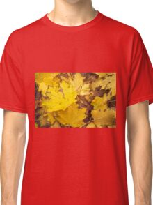 Yellow fallen autumn leaves photo Classic T-Shirt