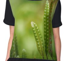 The beauty of leaves Chiffon Top