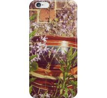 Old Flowerpots & Campanula iPhone Case/Skin