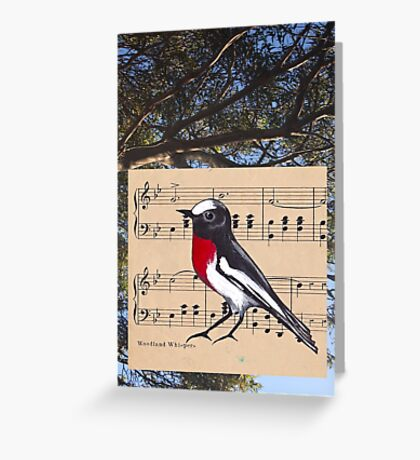Woodland Whispers - Scarlet Robin Greeting Card