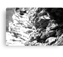 Bark Textures Black and White 2 Canvas Print