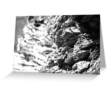 Bark Textures Black and White 2 Greeting Card