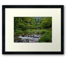 TOHOKU 5 Framed Print