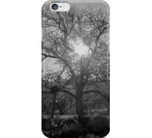 Winter Sunlight iPhone Case/Skin