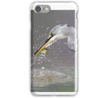 Grey Heron iPhone Case/Skin