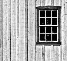 A Single Window by cclaude