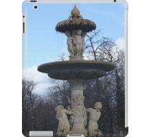 Fantastic fountain iPad Case/Skin