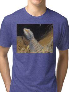 Little Scamp Tri-blend T-Shirt