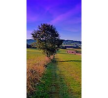 A lonely tree with some scenery around | landscape photography Photographic Print