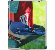 Blue Jay iPad Case/Skin