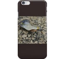 Muscles by the Water iPhone Case/Skin