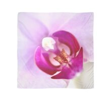 Pink Moth Orchid Center SQ Scarf