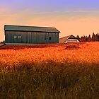 Burning fields of summer | landscape photography by Patrick Jobst