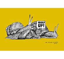 Alford Snails - Hurry Up Photographic Print