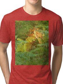 Colourful Fern Tri-blend T-Shirt