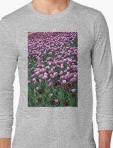 Field of Tulips Long Sleeve T-Shirt