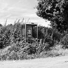 Overgrown Phonebox by RedSteve