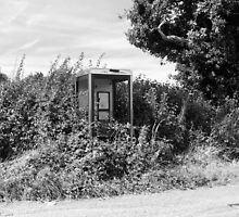 Overgrown Phonebox by RedSteve