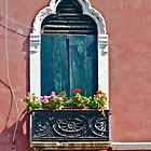 Venetian Window (1) by Hayley Musson