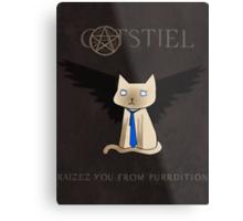 Supercatural Metal Print