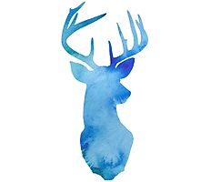 Cool Blue Stag Photographic Print