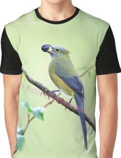 Long-tailed Silky-Flycatcher - Costa Rica Graphic T-Shirt