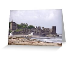 Gulls at St Andrews Castle Greeting Card