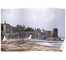 Gulls at St Andrews Castle Poster