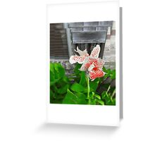 Flower 4 Greeting Card