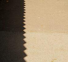 Shadows by Bluesrose
