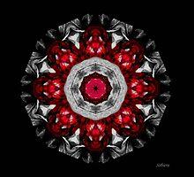 Pomegranate Burst by Rosemary Sobiera