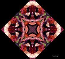 Four Seasons by Rosemary Sobiera
