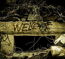 We've Been Expecting You by Heidelberger Photography