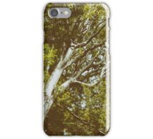 Green Tree Foliage In Summer iPhone Case/Skin