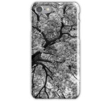 Tree Foliage Abstract iPhone Case/Skin