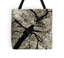 Tree Foliage Abstract Tote Bag