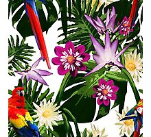 Tropical Floral Pattern - Red Parrot Photographic Print