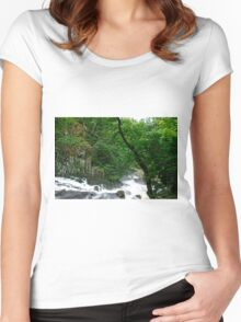 Swallow falls Women's Fitted Scoop T-Shirt