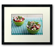 Useful vegetarian food from raw tomatoes, cucumbers and onions Framed Print