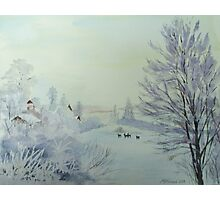 Winter Visitors Photographic Print