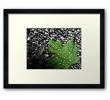 That Rainy Day is Here! Framed Print