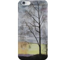 Winter Sunset Skies iPhone Case/Skin