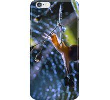 """Snail on sunrise"" iPhone Case/Skin"