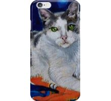 Cat and his Blanket iPhone Case/Skin