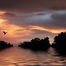 Sunset River by Jessica Jenney