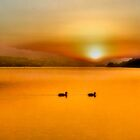 Golden sunset by missmoneypenny